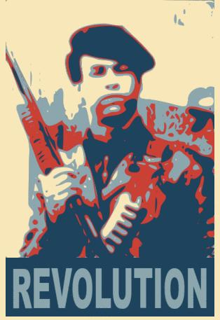 Revolution BPP